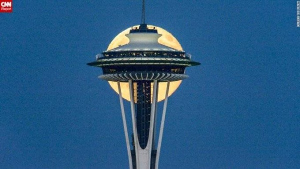 Nhiếp ảnh gia Tim Durkan đã chụp bức hình tuyệt hảo này tại Seattle in 2014