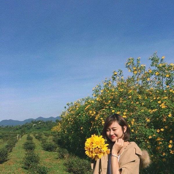 Hoa da quy (4)