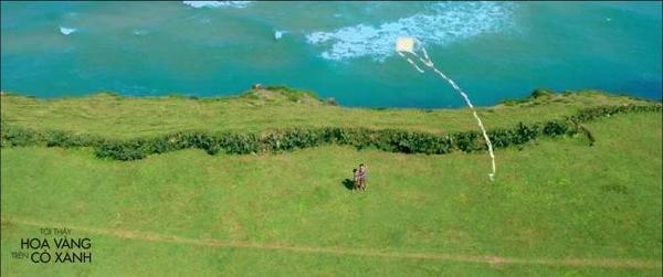 Một cảnh quay bằng flycam của Tôi thấy hoa vàng trên cỏ xanh.