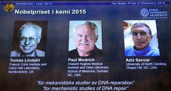Giải Nobel Hóa học 2015 đã được trao cho các nhà khoa học Tomas Lindahl, Paul Modrich và Aziz Sancar. Ba nhà khoa học xuất chúng này đã có các phát hiện giúp lập bản đồ và giải thích cách thức tế bào sửa chữa dữ liệu di truyền (ADN), qua đó bảo vệ thông tin về gene. Theo đó, các nghiên cứu của họ đã mang tới kiến thức nền tảng, về việc một tế bào sống hoạt động ra sao và được sử dụng như thế nào trong sự phát triển các biện pháp điều trị ung thư mới.