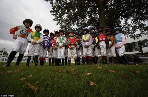 đua ngựa lùn ở Anh (7)