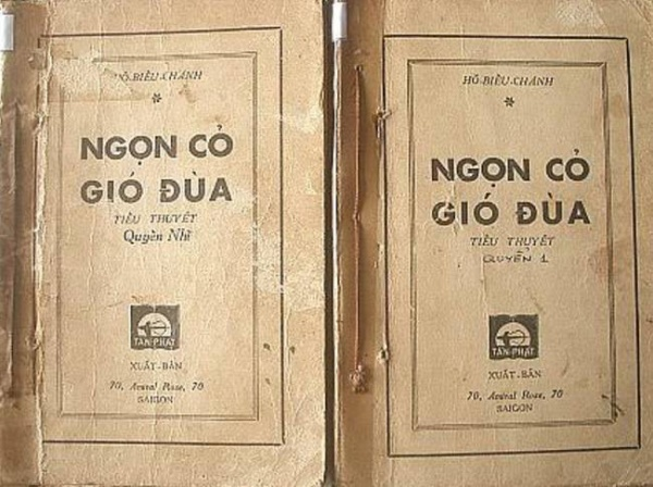 1-ngon-co-gio-dua