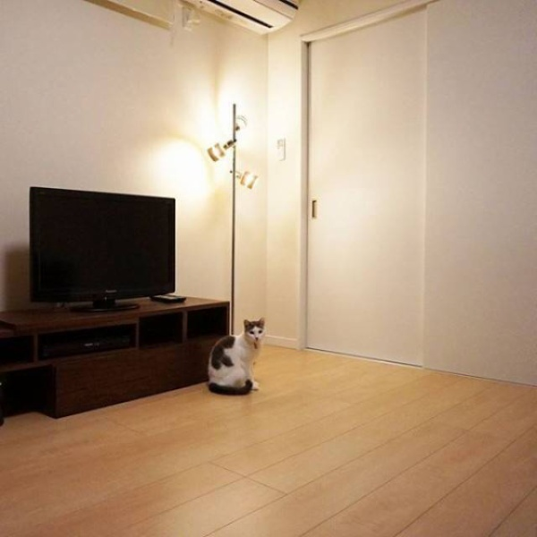 Căn hộ không cần quá nhiều nội thất, có thể ngồi sàn thay vì mua sofa, ghế bành.