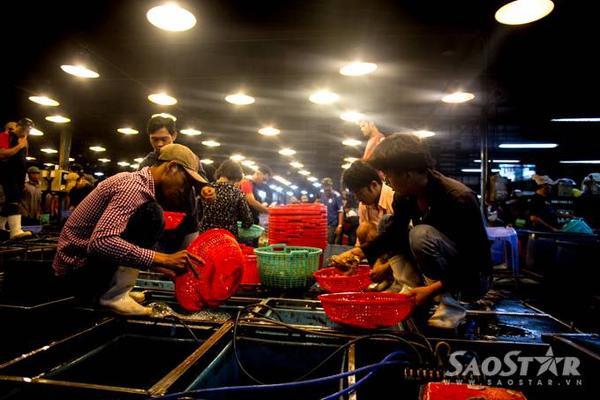 3h sáng, các thương lái từ các chợ trên địa bàn TP.HCM đổ về để mua các loại thủy hải sản để kịp các mặt hàng tươi sống có thể có mặt tại các chợ trên địa bàn TP.HCM vào sáng sớm phục vụ cho người dân.