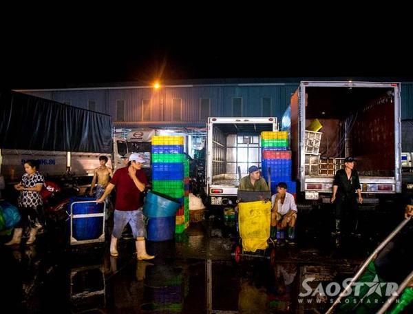 Hàng ngày có hơn hàng nghìn lượt xe hàng thủy hải sản tươi sống từ các miền Tây và miền Đông đổ về đây để gửi hàng cho các vựa hải sản tiêu thụ. Hàng ngày có khoảng 500 tấn thủy hải sản được tiêu thụ tại khu chợ thủy hải sản Bình Điền.