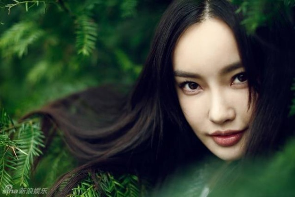 resize_dongphi