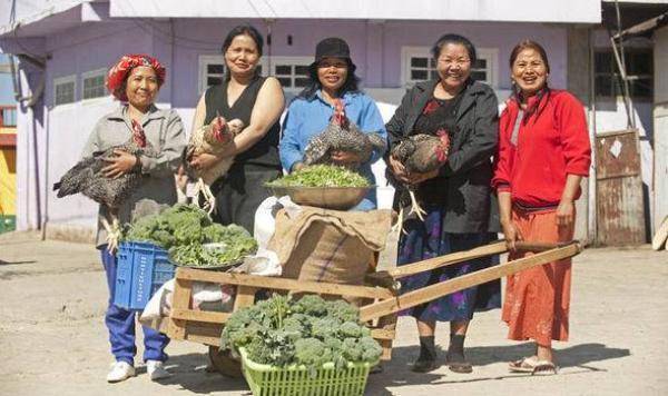 Mỗi ngày các bà vợ cùng nhau nấu nướng bữa ăn cho cả gia đình, trong khi các con trai đi làm đồng còn các con gái dọn dẹp nhà cửa.
