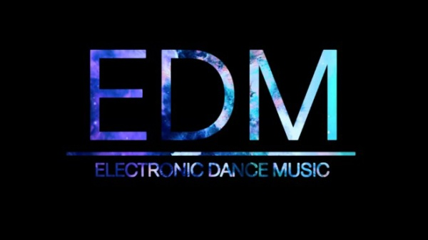 EDM gồm nhiều nhánh nhỏ như house, trance, electro, techno, dubstep, moonbathon, trip hop...