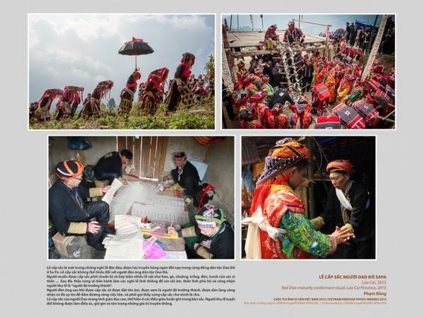 anhdisan2015 (4)