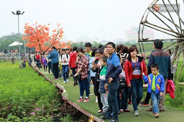Lượng khách đổ về thung lũng hoa Hồ Tây trong ngày 29/11 rất đông ngay từ buổi sáng và đạt đỉnh điểm vào khung giờ từ 11h đến 15h chiều.