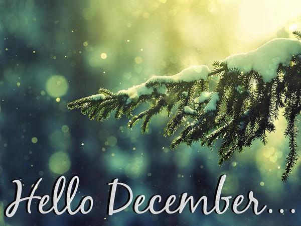 tu vi tháng 12 1
