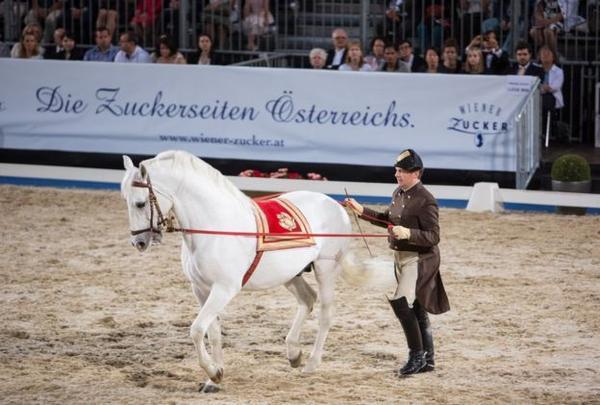 Các kỵ sĩ tại trường đua ngựa lâu năm tại Áo.
