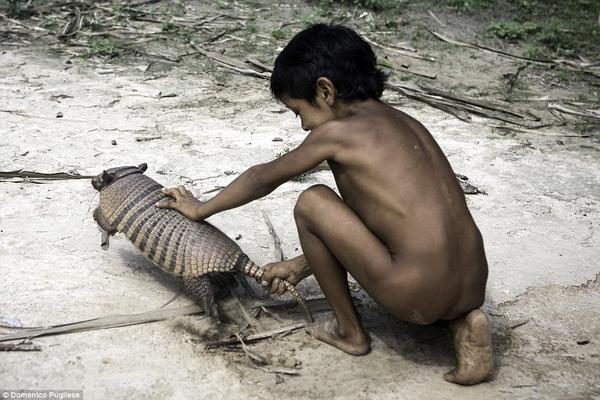 Gia đình đóng vai trò vô cùng quan trọng đối với bộ tộc Awa, các thành viên còn bao gồm các loài động vật hoang dã được nuôi như thú cưng trong nhà.