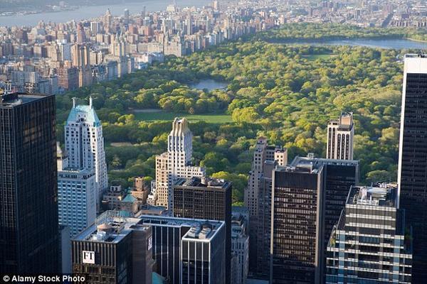 Hơn 42 triệu lượt khách đã đến vui chơi và ngắm cảnh đổi mùa thay lá tại công viên Trung tâm của thành phố New York.