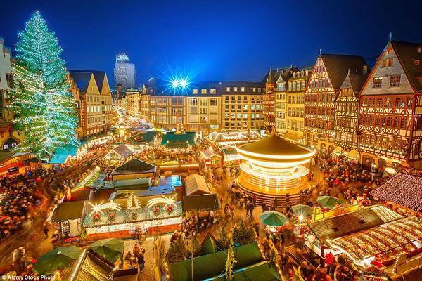 Cây thông cao 30 m tại chợ Noel Frankfurt, Đức - một trong những chợ Giáng sinh đẹp nhất thế giới.
