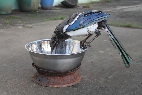 3. Biến sắt vụn thành loài vật