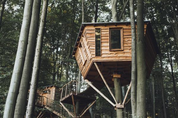 1. Nhà trên cây