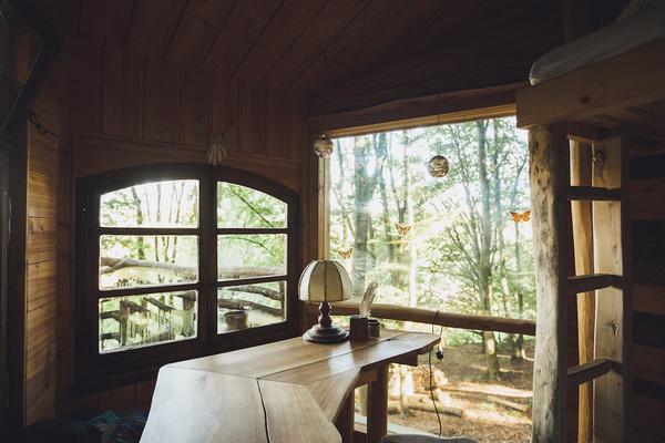 12. Nhà trên cây