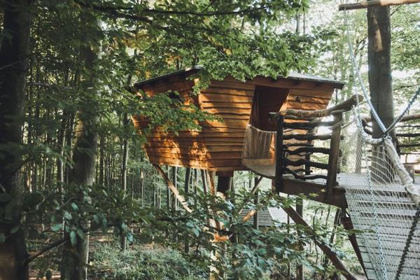 14. Nhà trên cây
