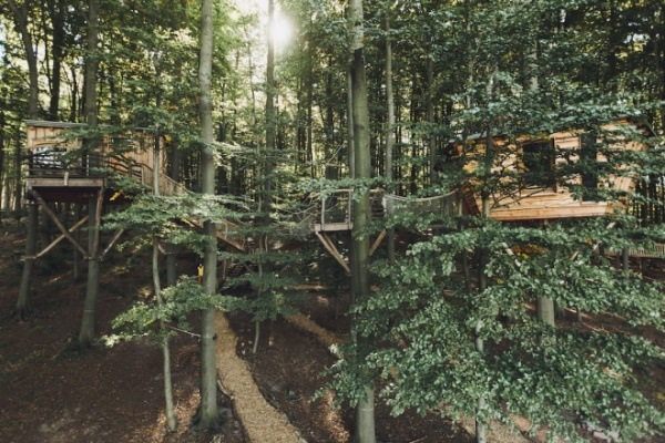18. Nhà trên cây