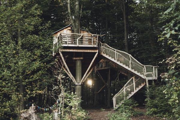 3. Nhà trên cây
