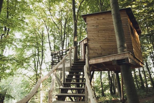 9. Nhà trên cây