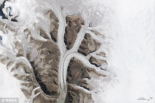 Các con sông băng ở Sirmilik thuộc Vườn Quốc gia Pond Inlet ở Mittimatalik, Canada tạo ra kiệt tác hình chữ K.