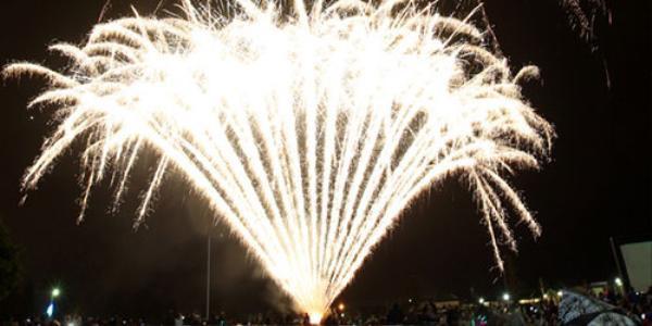 Pháo hoa đón năm mới 2016 ở Vỉnh Hawkes, New Zealand. Ảnh: New Zealand Hearald.