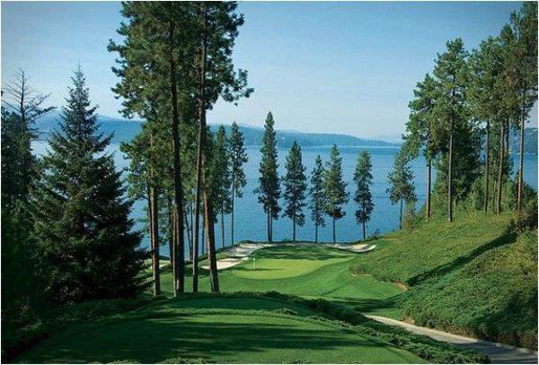 7. golfgiuaho