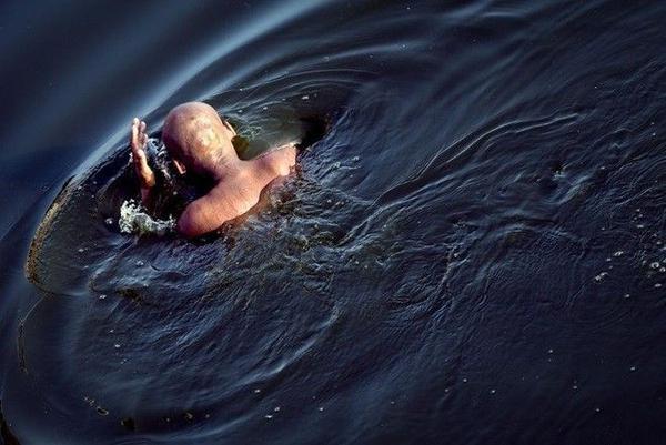 Một nhà sư đang đắm mình trong làn nước ở Mandalay, Myanmar.