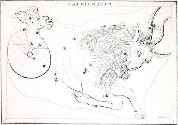 ZodiacalConstellationCapricornus