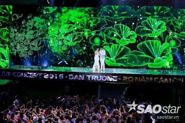 dan-truong (87)