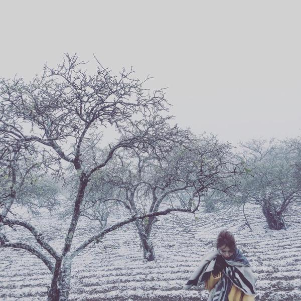 Nữ nhiếp ảnh gia Luciola cũng đang có mặt ở Mộc Châu và không quên check-in ngay lập tức. Ảnh: Dung Nguyễn.