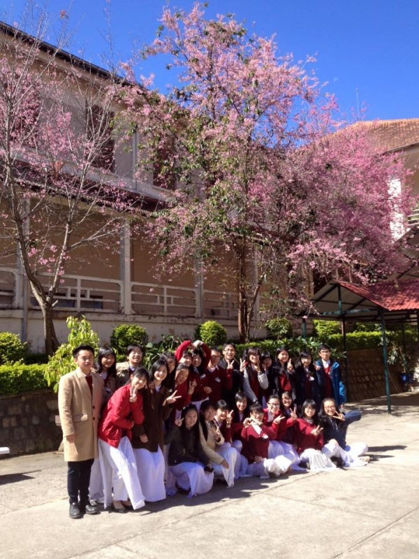 THPTThangLongDaLat (25)