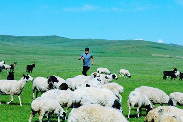Giây phút đáng nhớ nhất suốt hành trình qua nhiều quốc gia của Hồ Quang Hiếu chính là lúc được thả hồn theo những đồng cỏ trên thảo nguyên.