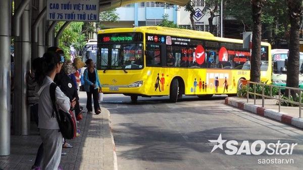 Xe bus 5 sao 5