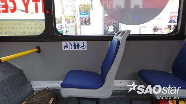 Xe bus 5 sao 8