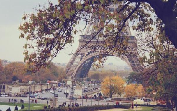 Ở lại thành phố trong mơ của nhiều người, hay trở quê hương ?