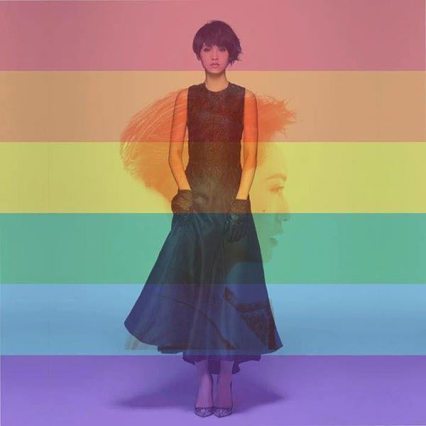 Avatar ủng hộ hôn nhân đồng tính của Dương Thừa Lâm.