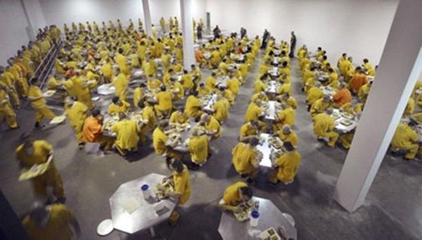 Nhà ăn với sức chứa gần 300 người của Theo Lacy.