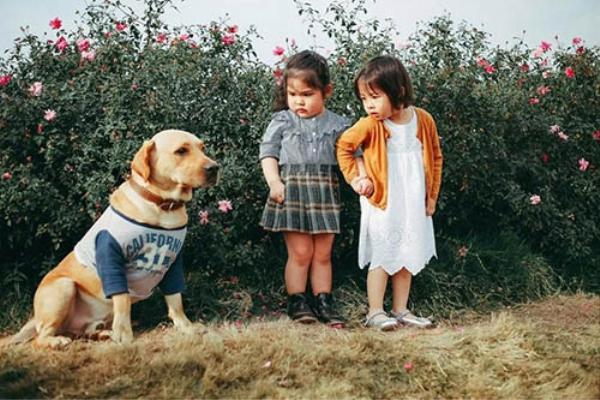 Biểu cảm sợ chó vô cùng đáng yêu của 2 cô bé 'gây sốt' cộng đồng mạng - ảnh 1