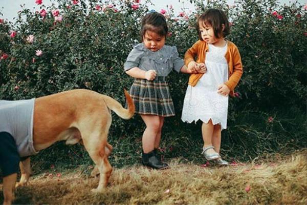 Biểu cảm sợ chó vô cùng đáng yêu của 2 cô bé 'gây sốt' cộng đồng mạng - ảnh 2