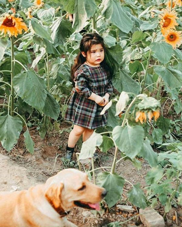 Biểu cảm sợ chó vô cùng đáng yêu của 2 cô bé 'gây sốt' cộng đồng mạng - ảnh 4