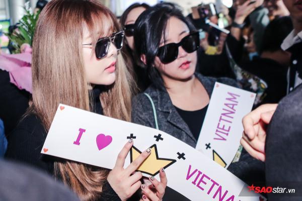 Lần thứ 5 sang Việt Nam, sức nóng của T-ara vẫn chưa hề hạ nhiệt! - Ảnh 10