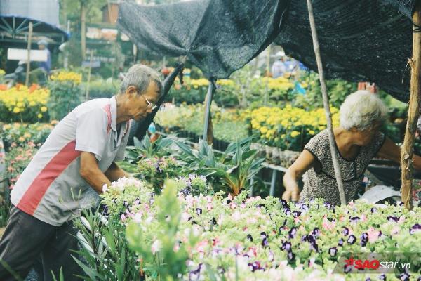 Những hình ảnh bình yên của làng hoa Sa đéc-nơi 4 mùa đều là mùa xuân