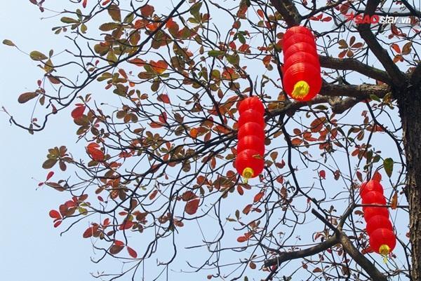 """""""Đọ"""" sắc đỏ rực rỡ cùng đèn lồng đỏ treo cao trên phố Lương Văn Can."""