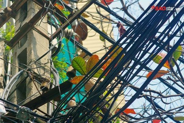 """Đến dây điện cũng """"tình"""". Dây điện chằng chịt cũng được coi là một biểu trưng không thể thiếu của phố cổ Hà thành."""