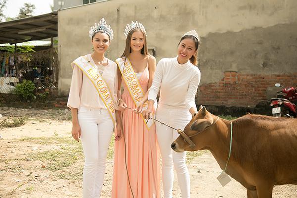 Hoa hậu Toàn cầu 2016 giản dị dắt bò đi làm từ thiện tại Đà Nẵng - Ảnh 3