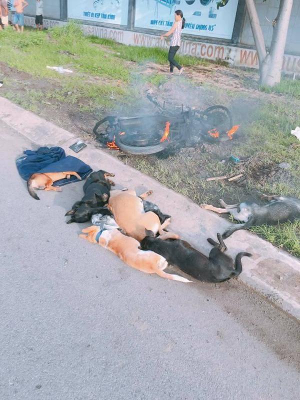 Người dân phát hiện hai thanh niên này đã trộm 7 chú chó.