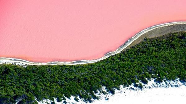 Giải mã nguyên nhân nước hồ bỗng dưng chuyển sang hồng phấn!